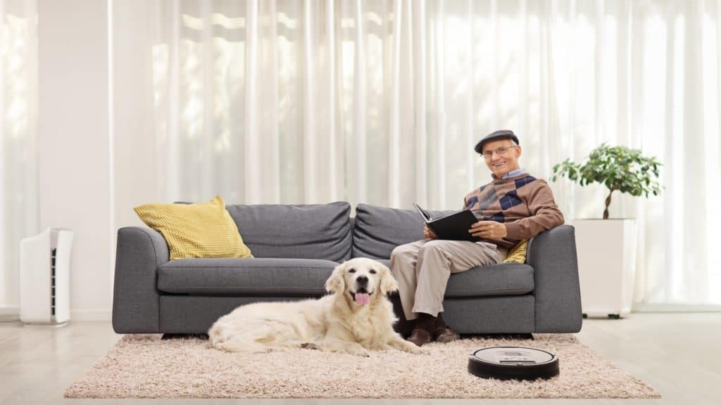 Elderly man and a retriever dog at home and a robotic vacuum cleaner cleaning the carpet